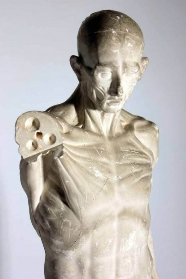 Late 19th Century Anatomical Plaster Figure