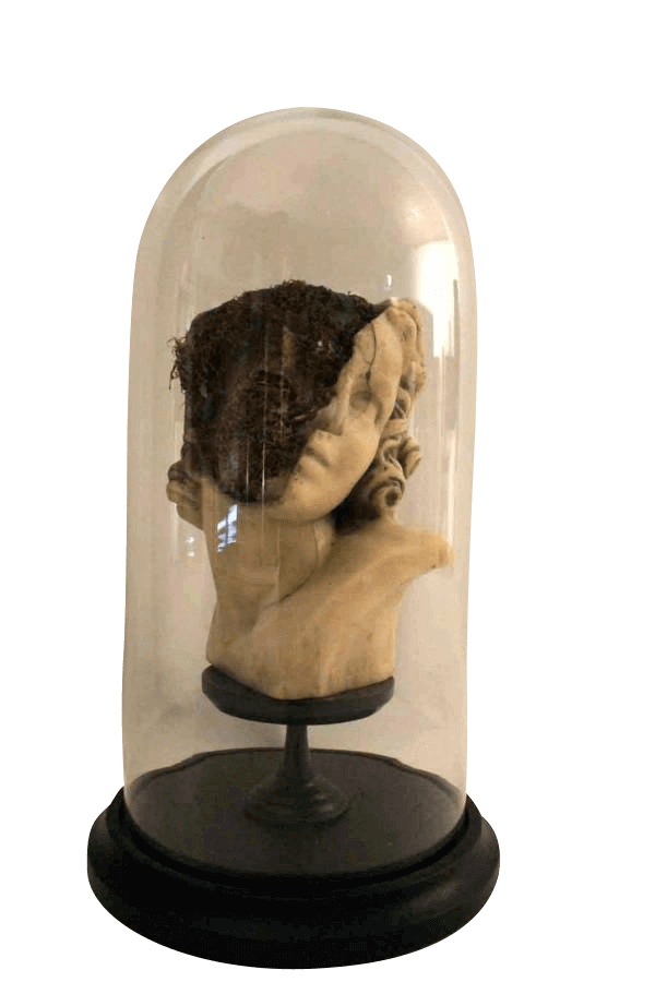 20Th Century Sculpture In A Glass Dome