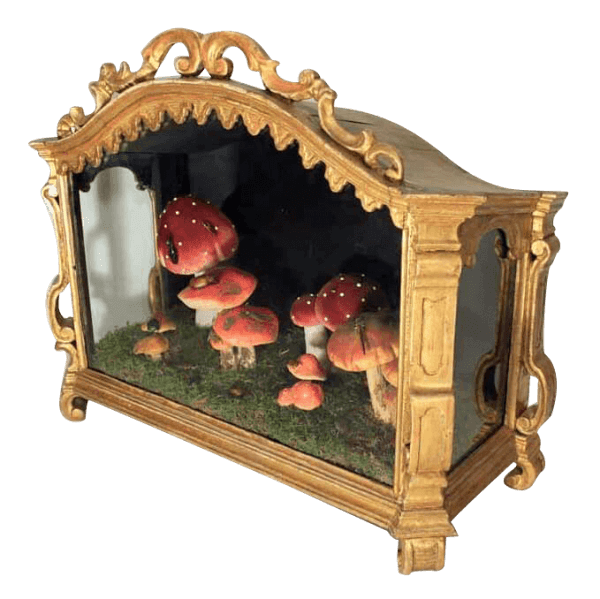 19Th Gilt Diorama Cabinet With Mushrooms And Insects