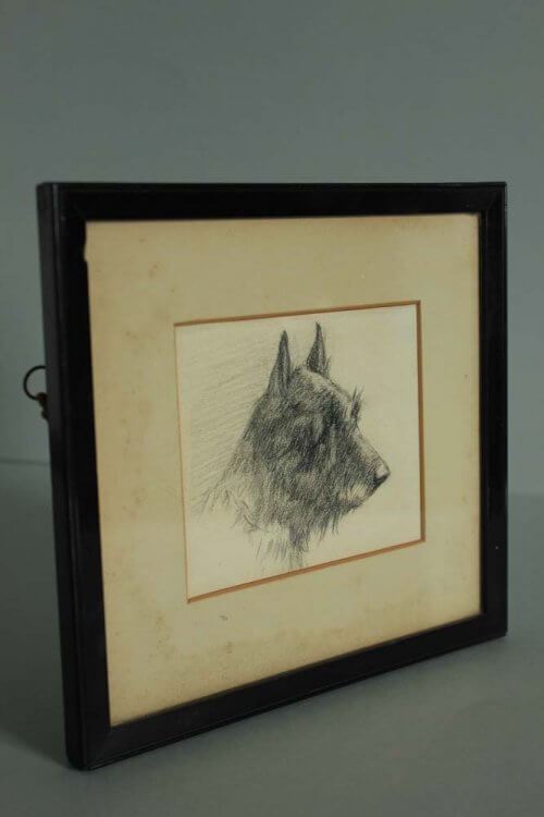 Edwardian Pencil Drawing of a Terrier at Blighty Antiques in Twigworth Gloucestershire
